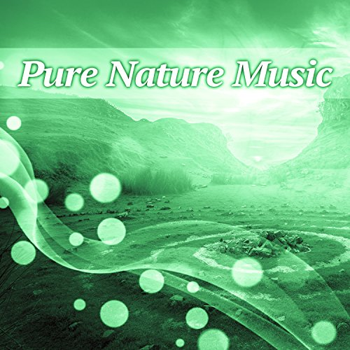 Anjey Satori - Sounds of Nature for Relaxation
