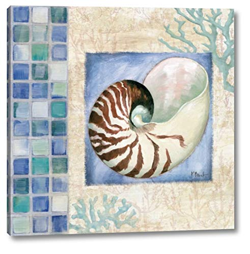 Mosaic Shell Collage V by Paul Brent - 15