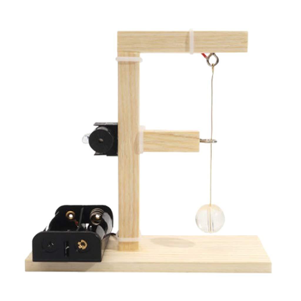 B Blesiya Modelo de Sism/ógrafo de Bricolaje Herramientas de Exprimento F/ísico Juquetes DIY
