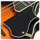 Ibanez M522SBS F-Style Mandolin, Brown Sunburst