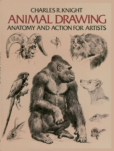 Animal drawing anatomy and action for artists dover anatomy for animal drawing anatomy and action for artists dover anatomy for artists by fandeluxe Gallery