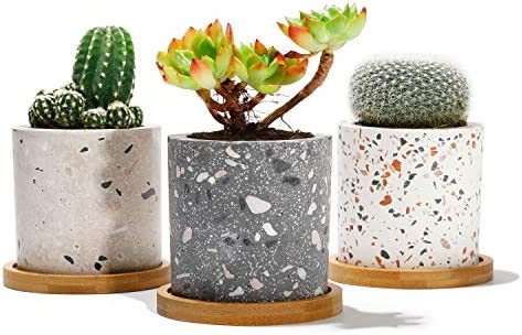 Potey Succulent Plant Terrazzo Planter product image