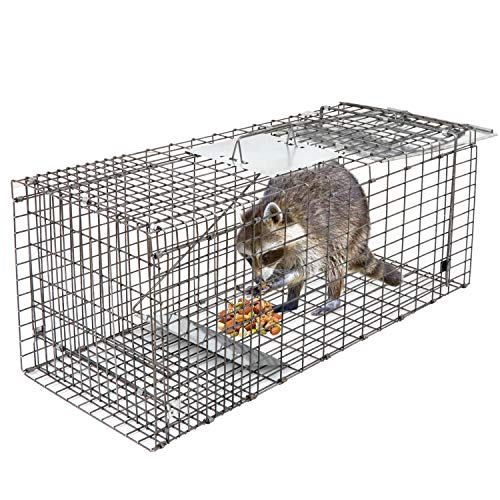 "HomGarden Live Animal Trap 32""x12.5""x12"" Catch Release Humane Rodent Cage for Rabbits, Groundhog, Stray Cat, Squirrel, Raccoon, Mole, Gopher, Chicken, Opossum, Skunk & Chipmunks Nuisance Rodents"