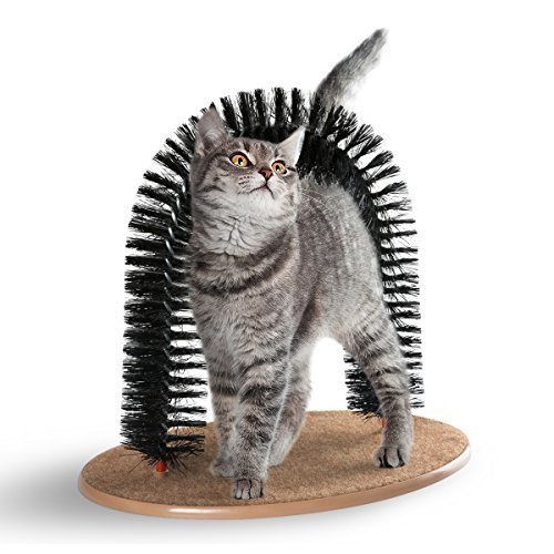Hollypet Cat Arch Self Groomer Scratcher Toy