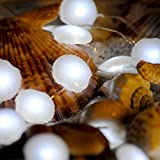 Sea Shell / Scallop String Lights by IMPRESS LIFE Ocean Series Copper Flexible Wire 10 ft 40 LEDs with Remote for Covered Outdoor, Summer, Seasonal, Wedding Parties & Home Ornaments