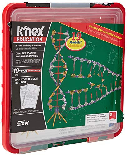 (K'NEX Education - DNA Replication and Transcription Set - 525 Pieces - Ages 10+ Science Educational Toy)