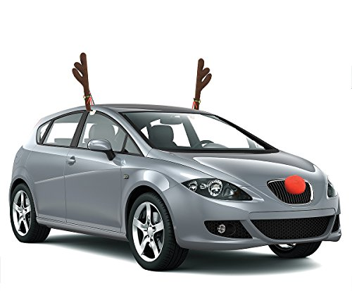 KOVOT (Reindeer Car Costume)