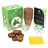 Herb Garden Starter Kit - Everything You Need to Grow Your Own Organic Herb Garden from a Seed | 8 Culinary Herb Varieties Including: Basil, Sage, Oregano, Parsley, Dill, Thyme, Cilantro, Chives