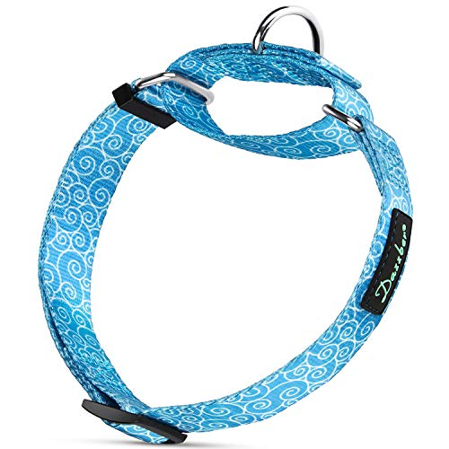 Large Adjustable Dog Collar - Dazzber Spray Pattern Martingale Dog Collar Heavy Duty, Sky Blue, Small, Neck 12