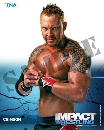 Wrestling 8x10 Promo Photo ()