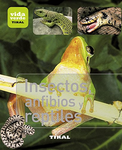 Descargar Libro Insectos, Anfibios Y Reptiles Aa.vv.