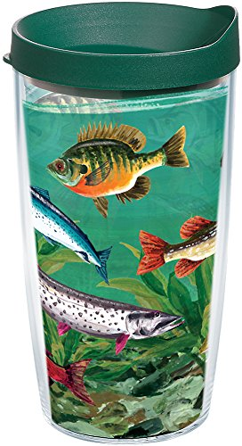 Tervis 1103120 Multi Fish Tumbler with Wrap and Hunter Green Lid 16oz, Clear