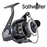 Spinning Reel, Saltwater Spinning Fishing Reels Battle II