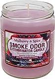 Smoke Odor Exterminator Odor Exterminator Mulberry and Spice 13oz by Smokers Candle, 13 oz, Mulberry & Spice