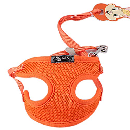 Dimart Dog Chest Harness with Leash - Lightweight Yet Sturdy Adjustable & Breathable Mesh Vest for Small & Medium Dogs (M,Orange)