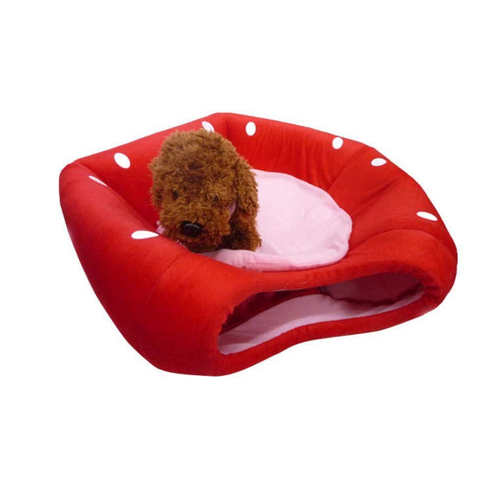 635 Cama para Perros Linda camada de Perro Fresa Puede es Lavable y doblado para la Cueva del Gato casa Perro pequeño Cama: Amazon.es: Hogar