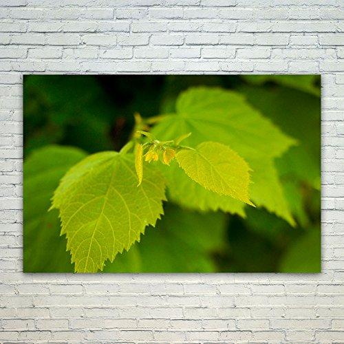 Cheap  Westlake Art Tree Leaf - 12x18 Poster Print Wall Art - Modern..