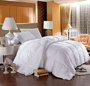 LUXURIOUS 800 Thread Count HUNGARIAN GOOSE DOWN Comforter 750 Fill Power, 50 oz Fill Weight, 100% Egyptian Cotton Cover by Egyptian Bedding