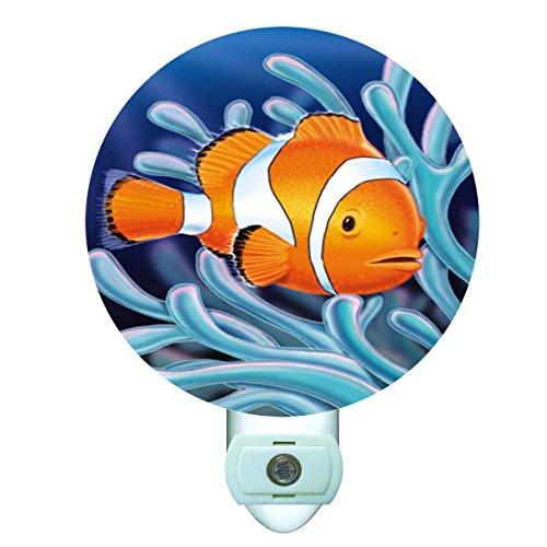 Clownfish in Anemone Decorative Round Night (Anemone Clownfish)