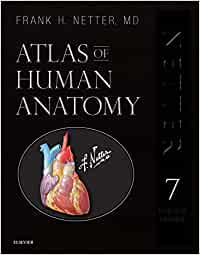Atlas of Human Anatomy, Professional Edition: including NetterReference.com Access with Full Downloadable Image Bank, 7e (Netter Basic Science)