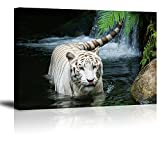 White Tiger Picture Decor for Bedroom, PIY Gorgeous Wall Art of Ivory Tigress in Pond, Wild Life Theme Canvas Painting Prints on Canvas (1'' Thick, Waterproof Artwork, Bracket Mounted Ready to Hang)
