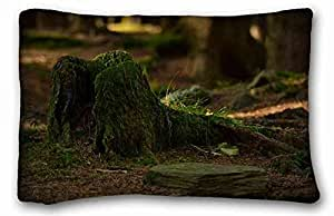 Generic Personalized Nature Custom Cotton & Polyester Soft Rectangle Pillow Case Cover 20x30 inches (One Side) suitable for Twin-bed