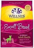 Wellness Small Breed Adult Health Dry Dog