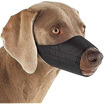 """Guardian Gear  Lined Nylon Muzzles — Versatile Muzzles for Dogs - 7"""" Snout, Size 3, Black"""