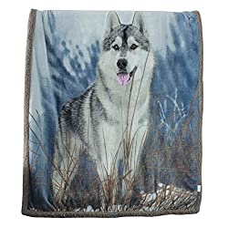 Sherpa Fleece Blanket Throw Size, SearchI Reversible Plush Throw Blanket for Couch Sofa Chair, Super Soft Fuzzy Cozy Wolf Dog Animal Printed Blanket for Kids Boys Girls Children, 51 x 63 inches