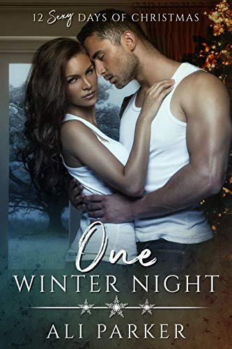 Free - One Winter Night: A Sexy Bad Boy Holiday Novel (The Parker's 12 Days of Christmas Book 1)
