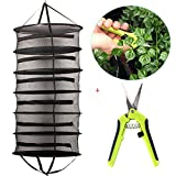 Casolly Collapsible 2-Ft 6-Layer Hanging Dry Net Black Mesh with Zipper,A Portable Gardening Scissors Included Review