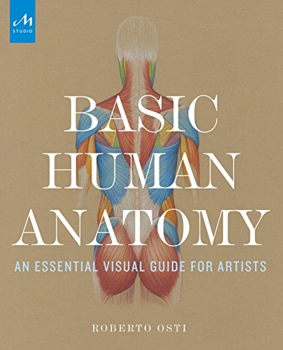 Basic-Human-Anatomy-An-Essential-Visual-Guide-for-Artists