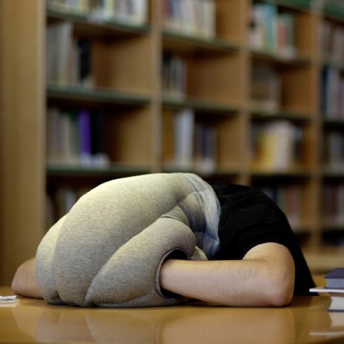 OSTRICHPILLOW ORIGINAL Travel Pillow for Airplanes, Car, Neck Support for Flying, Power Nap Head Pillow