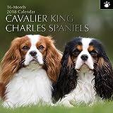 2018 Cavalier King Charles Spaniels Calendar - 12 x 12 Wall Calendar - With 210 Calendar Stickers