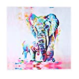 AmoyTrade 60cm Watercolor Elephant Oil Colorful Modern Abstract Art Painting Artwork Canvas Painted Office Home Wall Decor