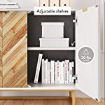Nathan James Enloe Modern Storage, Free Standing Accent Cabinet with Doors in a Rustic Fir Wood Finish Powder-coated…