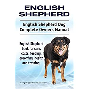 English Shepherd. English Shepherd Dog Complete Owners Manual. English Shepherd book for care, costs, feeding, grooming, health and training. 17