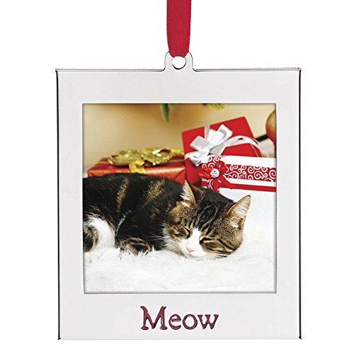 (Lenox Frame Ornament, Cat)