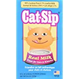 (6 Pack) Cat Sip Real Milk Treat for Cats and Kittens, 8 Ounces each