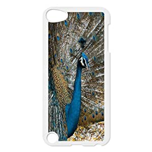 Best Quality [LILYALEX PHONE CASE] Peacock Flaunting Its Tail FOR Ipod Touch 5 CASE-18