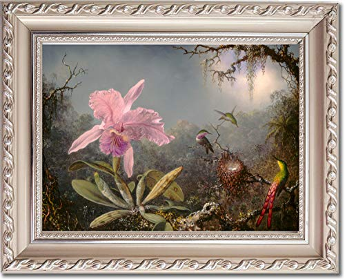 Framed Canvas Print - Cattleya Orchid and Three Hummingbirds - by Martin Johnson Heade ()