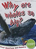 Oceans: Why are Whales So Big? (First Questions and Answers) (First Q&A)