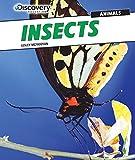 Insects, Lesley McFadzean, 1477769528