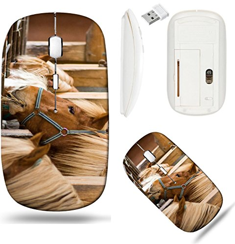 Stabl Base (Liili Wireless Mouse White Base Travel 2.4G Wireless Mice with USB Receiver, Click with 1000 DPI for notebook, pc, laptop, computer, mac book IMAGE ID: 4019143 many horses in a row eating at the stabl)