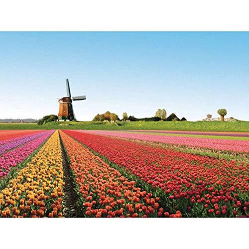 New Tulip Windmill Hand-Painted DIY Diamond Painting Full Diamond -50x60cm