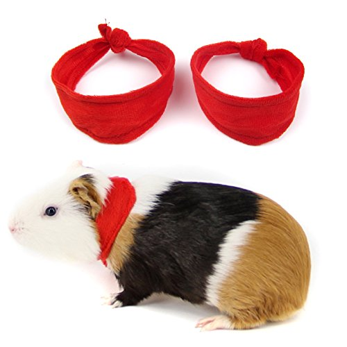 Alfie Pet by Petoga Couture -Pili 2-Piece Set Bandana for Small Animals like Mouse, Chinchilla, Rat, Gerbil and Dwarf Hamster - Color: Red, Size: Large