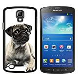 # Cellphone Hard Case PC Protective Cover Shell Case forSamsung Galaxy S4 Active i9295 # Pug Black White Puppy Cute Button Ear # Gift Phone Case Housing #