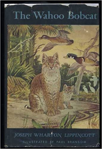 Wahoo Bobcat: Joseph Wharton Lippincott, Paul Bransom: 9780397301980