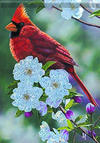 Springtime Accent - Carson Home Accents Trends Glitter Garden Flag, Springtime Cardinal