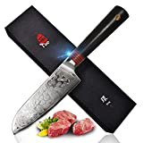 TUO Cutlery Santoku Knife 5.5 inch, Japanese AUS-10 High Carbon Rose Damascus Steel, Asian Kitchen Knife with Ergonomic G10 Handle - Ring R Serie